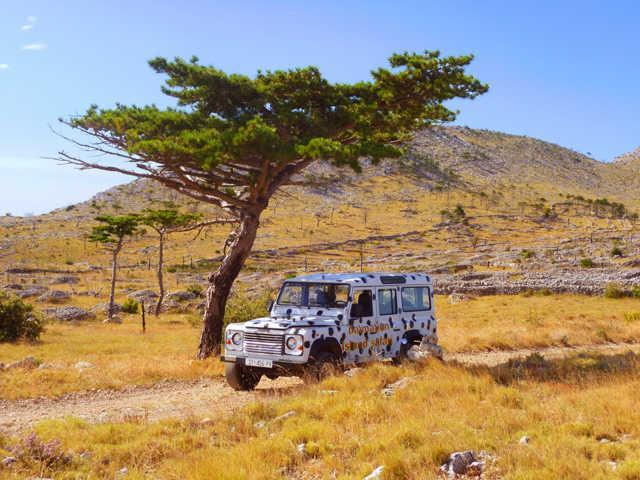 safari po wyspie Hvar
